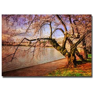 Trademark Fine Art Lois Bryan At the Cherry Blossom Festival Canvas Art 30x47 Inches