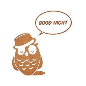 Home Decoration Mural Decor Sticker Good Night Owl Vinyl Wall Decals Interior