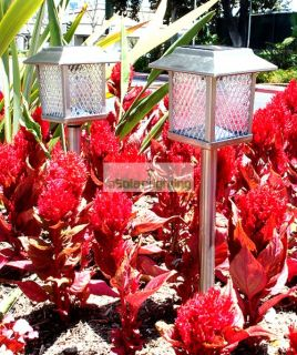 6 Outdoor Stainless Steel Square Solar Landscape Lights