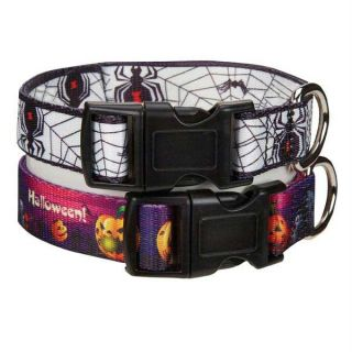 Fright Nite Pumpkins Spiders Halloween Dog Costume Collar Lead Leash s M L XL