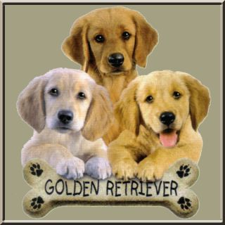 Golden Retriever Puppy Dog Breed Bone T Shirt s M L XL 2X 3X 4X 5X