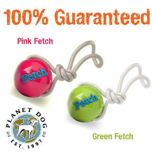 Planet Dog Orbee Tuff Fetch Ball Rope Indestructible Dog Chew Toy with Rope