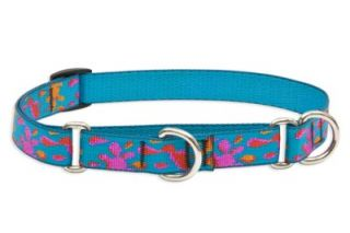 "Lupine 3 4"" Martingale Dog Collar 14"" 20"" Wet Paint"