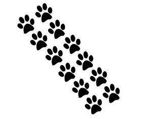 Paw Prints Group of 12 Vinyl Decals Modern Wall Decor Stickers Kids Pets Dog Cat