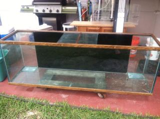 Oceanic Fish Tank 125 Gallon Aquarium Tank Only Local Pick Up Only