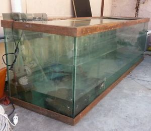 Fish Tank 200 Gallon w Filter Light and Stand