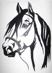 Window Car Vehicle Trailer Paso Horse Vinyl Decal