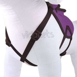 "16 20"" Purple Backpack Dog Harness Adjustable Comfort Wrap Pet Collar Medium"
