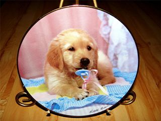 """Teething Time"" Golden Puppy Portraits Golden Retriever Dog Puppy Plate"