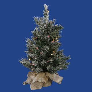 2' Pre Lit Flocked Jackson Pine Christmas Tree in Burlap Sack Multi LED Lights