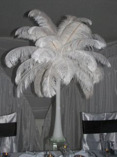 New 5pcs Wholesale White Quality Natural Ostrich Feathers 45 50cm Selection