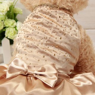 Cute Champagne Lace Small Pet Dog Cat Clothes Dress Size XS s M L Jumpsuit New