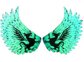 New El Eagles Wings Sticker Music El Panel Car Sticker El Equalizer 65cm 30cm