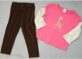 Toddler Girl Winter Clothing Lot Size 2T Gymboree Crazy 8