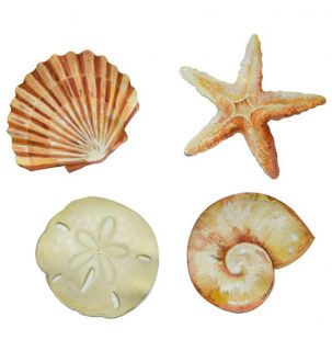 50 Sea Shells Sand Dollars Starfish Tropical Ocean Stickers Decals Wallies Lot
