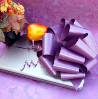6 Large Plum Eggplant not Purple Pull Bows Gift Wedding Chair Decorations