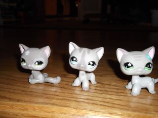 Littlest Pet Shop LPS Lot of 3 Shorthair Cats 483 Cozy Care Center 467 468