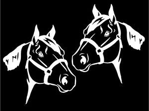 Quarter Horse Heads Car Decals Mirrored Image Set Window Trailer Sticker Graphic