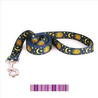 Yellow Dog Design PPS106LD Purple and Pink Stripes Lead   1 in. x 60 in.  Pet Leashes