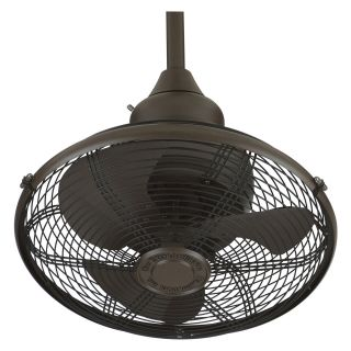 Fanimation Extraordinaire 18 in. Indoor/Outdoor Ceiling Fan   Outdoor Ceiling Fans