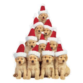 Paper House Golden Retriever Puppies Holiday Puzzle   Jigsaw Puzzles