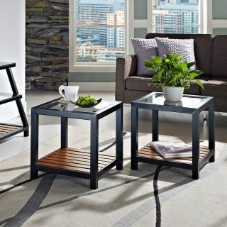 Walker Edison Square Glass and Metal End Tables   Set of 2   End Tables