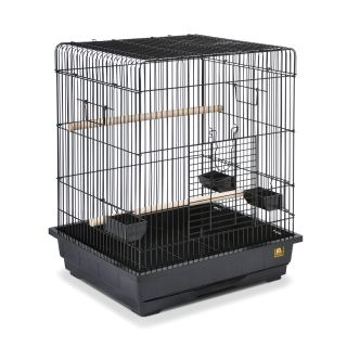 Prevue Pet Products Square Roof Parrot Cage   Black   25217   Bird Cages