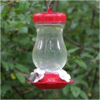 Perky Pet 24 oz. Glass Top Fill Hummingbird Feeder   Bird Feeders