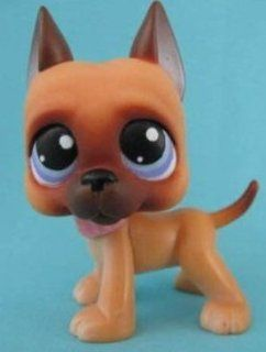 Great Dane Puppy Dog # 244 (caramel brown with blue eyes)   Littlest Pet Shop Replacement Figure Loose Retired LPS Collector Toy (Out Of Package/OOP)