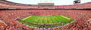 MasterPieces NCAA Tennessee Volunteers Stadium Panoramic Jigsaw Puzzle, 1000 Piece  Sports & Outdoors